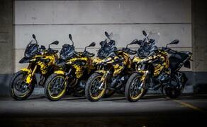Die Dunlop Bikes 2019 Bild 5