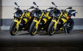 Die Dunlop Bikes 2019 Bild 6