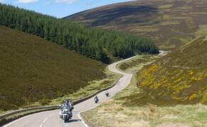 Geführte Motorradreisen mit Feelgood Reisen Bild 8 Heidekraut in den Highlands: Unterwegs auf einsamen Straßen in Schottlands Bergen  © Heinz Schoch, Feelgood Reisen