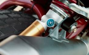Indian Motorcyle – Neuheiten 2019 Bild 4 Ein Gitterrohrrahmen, Sportfahrwerk und clevere Assistenzsysteme stehen ebenso bereit wie die sportliche und zugleich komfortable Sitzposition.