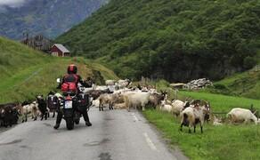 Motorrad-Touren unter 1000 Euro Bild 1 Touren unter 1000 Euro: Tolle Motorradtouren müssen nicht teuer sein © Feelgood Reisen