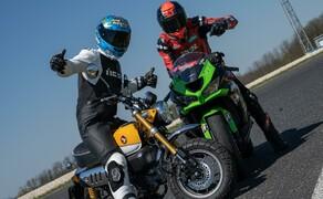 Honda Monkey auf der Rennstrecke! Kneedown am Pannoniaring! Bild 8
