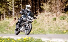 Reiseenduro Vergleichstest 2019: Moto Guzzi V85 TT Bild 20 Foto: Erwin Haiden, nyx.at