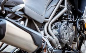 Reiseenduro Vergleichstest 2019 Triumph Tiger 800 XCA Bild 5 Foto: Erwin Haiden, nyx.at
