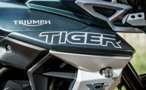 Reiseenduro Vergleichstest 2019 Triumph Tiger 800 XCA Bild 15 Foto: Erwin Haiden, nyx.at