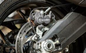 Reiseenduro Vergleichstest 2019: Ducati Multistrada 950 S Bild 3 Foto: Erwin Haiden, nyx.at