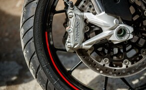 Reiseenduro Vergleichstest 2019: Ducati Multistrada 950 S Bild 5 Foto: Erwin Haiden, nyx.at