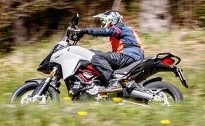 Reiseenduro Vergleichstest 2019: Ducati Multistrada 950 S Bild 20 Foto: Erwin Haiden, nyx.at