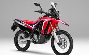 Honda Offroad 2020 Bild 2