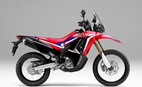 Honda Offroad 2020 Bild 3