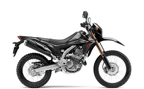 Honda Offroad 2020 Bild 4