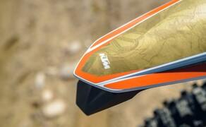 KTM EXC 2020 Bild 14 Erzberg Rodeo 300 EXC TPI