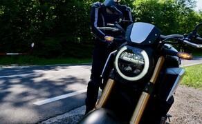 Honda CB650R vs. KTM 690 Duke 2019 Bild 2
