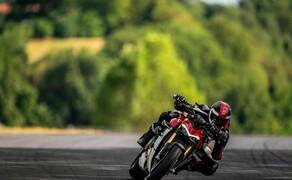 """Motorrad Neuheiten 2020 Bild 16 Ist sie die Neuheit der Saison 2020? Kein anderes Modell hat zurzeit für so viel Interesse auf 1000PS gesorgt wie der neue Ducati Streetfighter V4. Die Eckdaten: 208 PS und 199 Kilogramm! Hier geht's zu <a href=""""/modellnews-3006119-ducati-streetfighter-v4-2020-next-level-naked-bike"""">allen Infos und Bildern</a>!"""