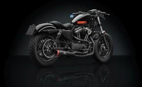 Rizoma Zubehör für die Harley Davidson Sportster Forty Eight Bild 2