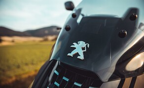 Peugeot Pulsion 125 RS Bild 16