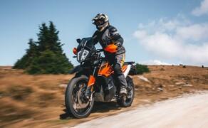 KTM 790 Adventure - Offroad-Test am Hochwechsel Bild 16