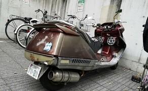 Honda CN250 Helix StreetFind der Woche Bild 1