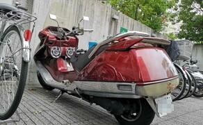 Honda CN250 Helix StreetFind der Woche Bild 8