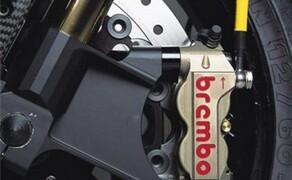 Petronas FP1 Superbike Bild 9