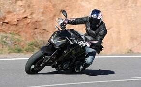Motorrad Zulassungen Deutschland - Top 10 Bild 16 Verkaufte Einheiten in Deutschland: 2.729
