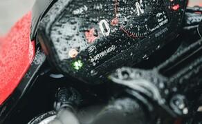 Ducati Hypermotard 950 2019 Bild 15