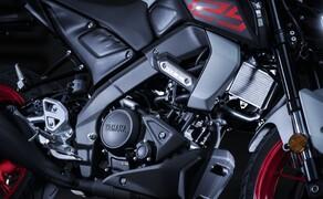Die neue Yamaha MT-125 2020 - Erste Bilder und Infos Bild 4
