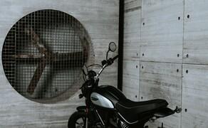 Ducati Scrambler 800 2020 – neue Icon Dark als Einstieg Bild 6