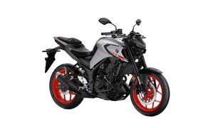 Yamaha Motorrad Neuheiten 2020 Bild 4 Die Yamaha MT-03 2020.