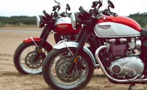 Triumph Bonneville T100 & T120 Bud Ekins Special Edition Bild 1