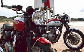 Triumph Bonneville T100 & T120 Bud Ekins Special Edition Bild 4