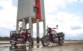 Triumph Bonneville T100 & T120 Bud Ekins Special Edition Bild 5