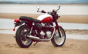 Triumph Bonneville T100 & T120 Bud Ekins Special Edition Bild 7