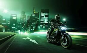 Kawasaki Z900 2020 Bild 1