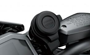 Kawasaki Z900 2020 Bild 18