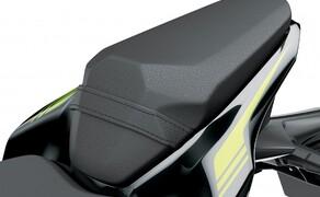 Kawasaki Z900 2020 Bild 19