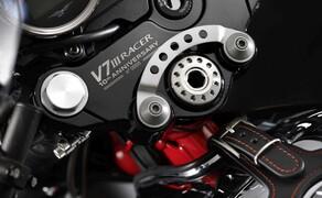 Moto Guzzi V7 Sondermodelle 2020 Bild 7