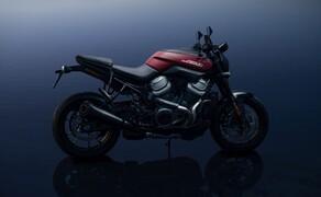Harley Davidson Bronx 2021 und Pan America 2021 Bild 4 Harley-Davidson Bronx 2021
