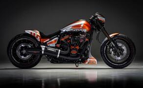 Battle of the Kings Finalisten 2019 Bild 4 Thunderbike Harley- Davidson Niederrhein aus Deutschland: Roar