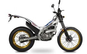Montesa Cota 260 2020 Bild 4
