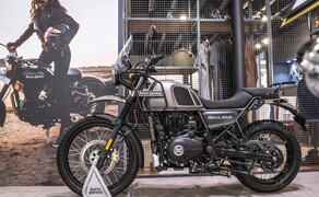 Royal Enfield Neuheiten 2020 Bild 5 Royal Enfield Himalayan in Gravel Grey