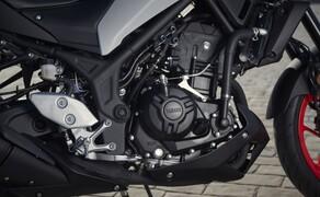 Yamaha MT-03 Test 2020 Bild 18