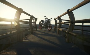 Yamaha MT-03 Test 2020 Bild 4