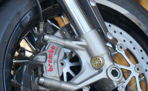 Triumph Thruxton RS Test 2020 Bild 15 Vorderradbremse: 2 x 310 mm schwimmende Brembo-Bremsscheiben, Brembo M50-4-Kolben Monobloc-Bremssättel, radial montiert, ABS