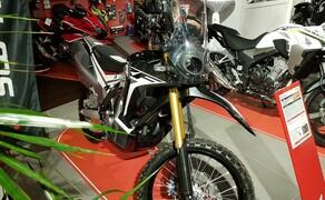 Honda Semmler - 2019 Road Show & Gartenmesse Bild 5