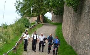 Odenwald 2009 Bild 4