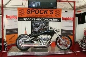 BigDog Motorcycles Type Pitbull