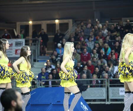 Hallentrial WM in Wr. Neustadt - Cheerleadershow