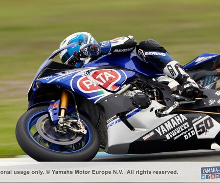 Pata Yamaha WorldSBK YZF-R1 Action