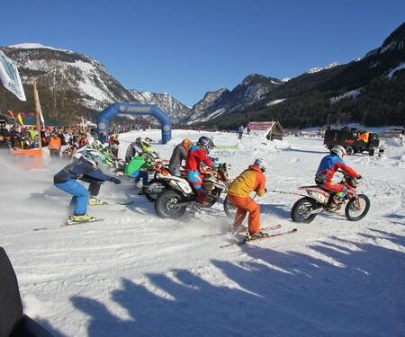7. Holzknecht-Skijöring Nachbericht